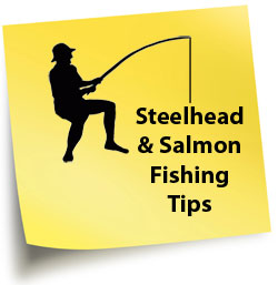Salt Water Fishing Tips